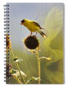Sunny Finch Spiral Notebook