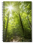 Sunny Forest Path Spiral Notebook
