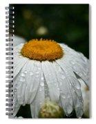 Sunny Sides Up Spiral Notebook
