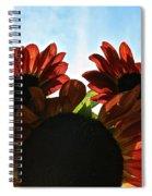 Sunny Trio Spiral Notebook