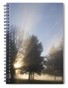 Sunray Through Trees And Fog Spiral Notebook