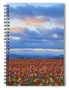 Sunrise Over A Tulip Field At Wooden Spiral Notebook