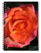 Sunrise Rose Spiral Notebook
