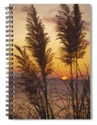 Sunset On The Mediterranean Sea And Plant Spiral Notebook