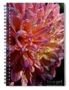 Sunset Dahlia Spiral Notebook
