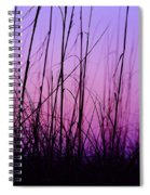 Sunset Grasses Spiral Notebook