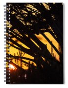 Sunset In The Trees Spiral Notebook