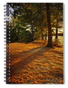 Sunset In Woods At Lake Shore Spiral Notebook