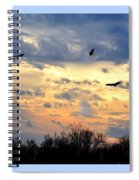 Sunset Of The Hawks Spiral Notebook