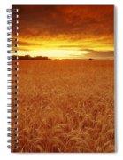 Sunset Over Wheat Field Spiral Notebook