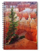 Sunset Point Trees Spiral Notebook