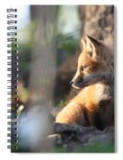 Sunsetting On Youth Spiral Notebook
