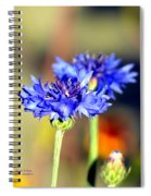 Sunshine Blues Spiral Notebook
