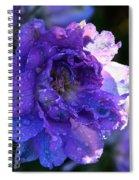 Sunshine Post Showers Spiral Notebook