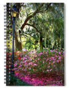Sunshine Through Savannah Park Trees Spiral Notebook