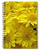 Sunshine Yellow Chrysanthemums Spiral Notebook