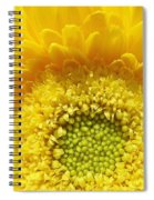 Sunshine Yellow Spiral Notebook