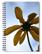 Sunstar Spiral Notebook