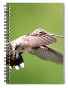 Sure Shy Spiral Notebook