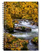 Surrounded By Autumn Spiral Notebook