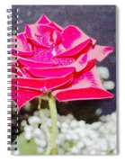 Suzannes Fantasy Rose Spiral Notebook