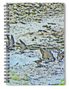 Swallows At The River Spiral Notebook