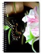 Swallowtail Spiral Notebook