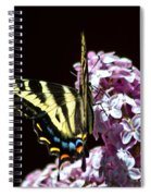 Swallowtail On Lilac 3 Spiral Notebook