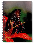 Swallowtail On Orange Spiral Notebook