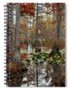 Swamp In Fall Spiral Notebook
