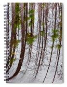Swamp Reflection Spiral Notebook