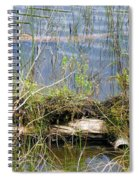 Swamp Spiral Notebook