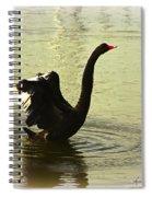 Swan Dance 3 Spiral Notebook