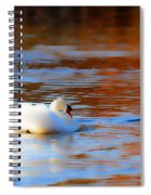 Swan Gold And Blue Spiral Notebook