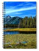 Swan Lake II Spiral Notebook