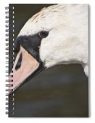 Swan's Head Spiral Notebook