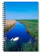 Swans On Bog, Near Newcastle, Co Spiral Notebook