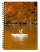 Swans Soft And Smooth Spiral Notebook