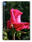 Swarthmore Spiral Notebook