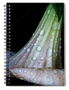 Sweet And Rainy Spiral Notebook