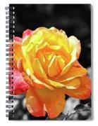 Sweet Aroma Spiral Notebook