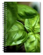 Sweet Basil From The Garden Spiral Notebook