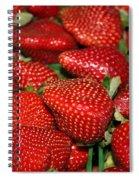 Sweet Florida Strawberries Spiral Notebook