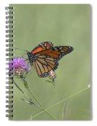 Sweet Nectar Spiral Notebook