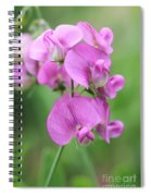 Sweet Pea 1 Spiral Notebook