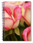 Sweet Roses Spiral Notebook