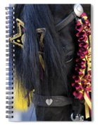 sweetheart - a Menorca race horse with traditional multicolor ribbons and mirror star Spiral Notebook