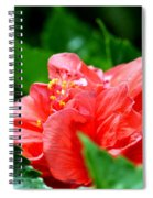 Sweetheart Red Spiral Notebook
