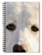 Sweetie In The Boonies Spiral Notebook