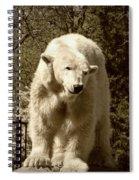 Sweetness Spiral Notebook